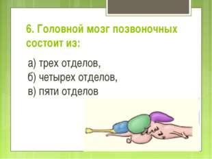 6. Головной мозг позвоночных состоит из: а) трех отделов, б) четырех