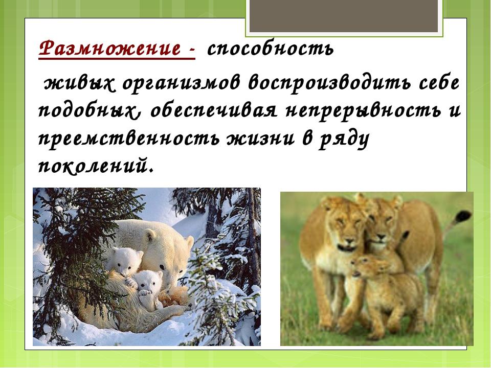 Размножение - способность живых организмов воспроизводить себе подобных, обе...