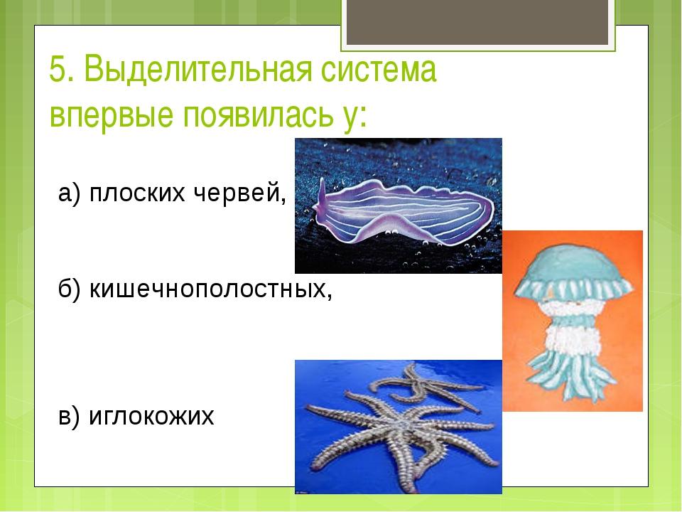 5. Выделительная система впервые появилась у: а) плоских червей, б) кишечно...