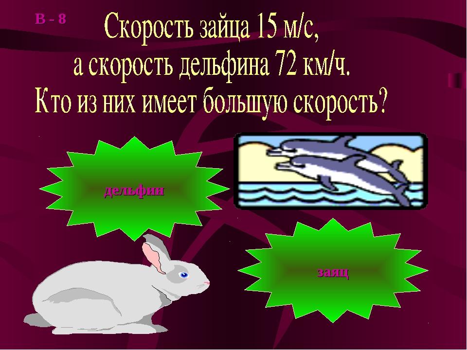 заяц дельфин В - 8