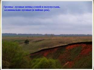 Группы: луговые почвы степей и полупустынь, аллювиально-луговые (в поймах ре