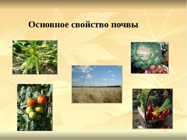 Основное свойство почвы
