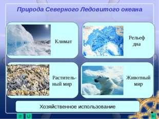 Природа Северного Ледовитого океана Климат Рельеф дна Животный мир Раститель-