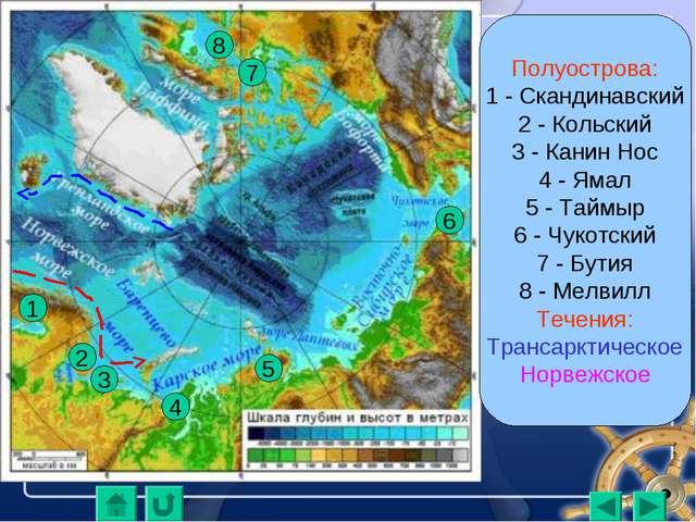 Полуострова: 1 - Скандинавский 2 - Кольский 3 - Канин Нос 4 - Ямал 5 - Таймыр...