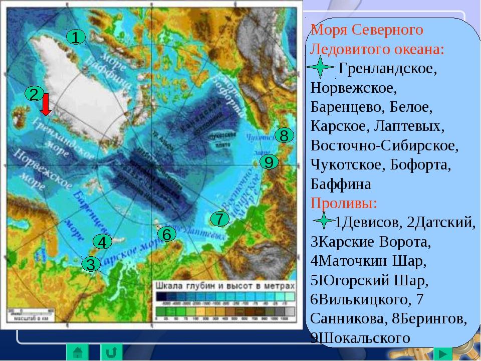 Моря Северного Ледовитого океана: Гренландское, Норвежское, Баренцево, Белое,...
