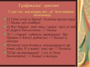 Графикалық диктант Сұрақтың жауаптары жоқ; иә белгілерімен белгіленеді. 1) Та