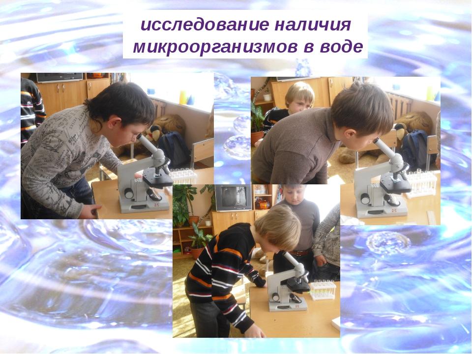 исследование наличия микроорганизмов в воде