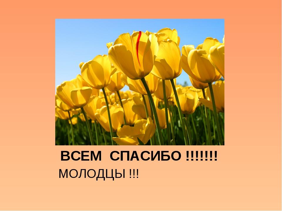 ВСЕМ СПАСИБО !!!!!!! МОЛОДЦЫ !!!