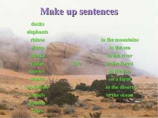 Make up sentences