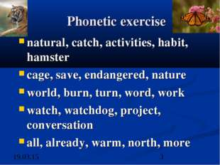 Phonetic exercise natural, catch, activities, habit, hamster cage, save, enda