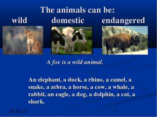 The animals can be: wild domestic endangered A fox is a wild animal. An eleph