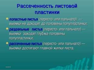 * * Рассеченность листовой пластинки лопастные листья (перисто- или пальчато)
