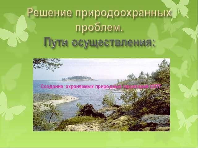 Создание охраняемых природных территорий (ОПТ