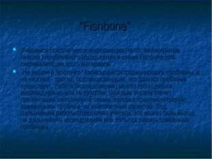 """""""Fishbone"""" Учащимся предлагается информация (текст, видеофильм, лекция ) проб"""