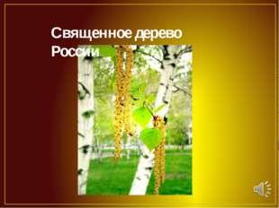 Священное дерево России