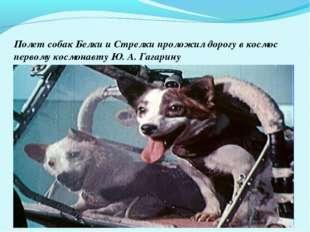 Полет собак Белки и Стрелки проложил дорогу в космос первому космонавту Ю. А.