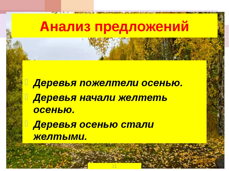 Анализ предложений Деревья пожелтели осенью. Деревья начали желтеть осенью. Д...