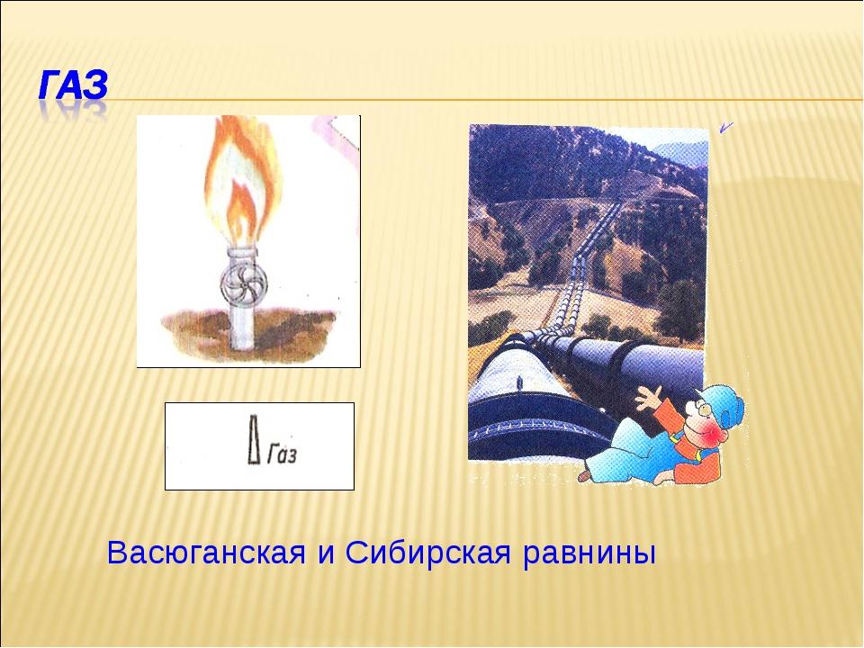 Васюганская и Сибирская равнины