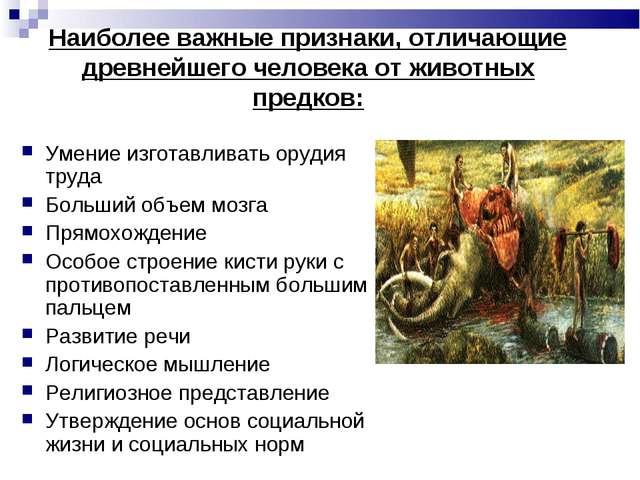 Наиболее важные признаки, отличающие древнейшего человека от животных предков...