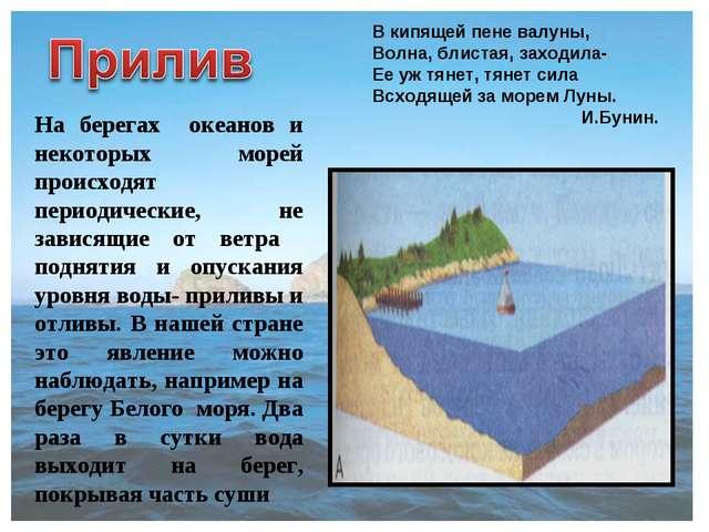 На берегах океанов и некоторых морей происходят периодические, не зависящие о...