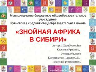 Муниципальное бюджетное общеобразовательное учреждение Куяновская средняя общ
