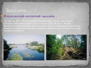 Ичалковский охотничий заказник (6,2 тыс. га., 1971 г.) Включает пойму южной в