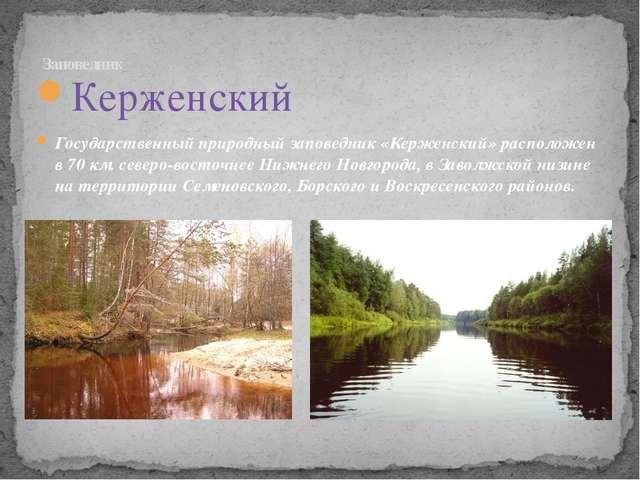 Керженский Государственный природный заповедник «Керженский» расположен в 70...