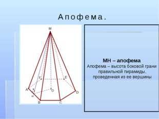 Апофема. МН – апофема Апофема – высота боковой грани правильной пирамиды, про