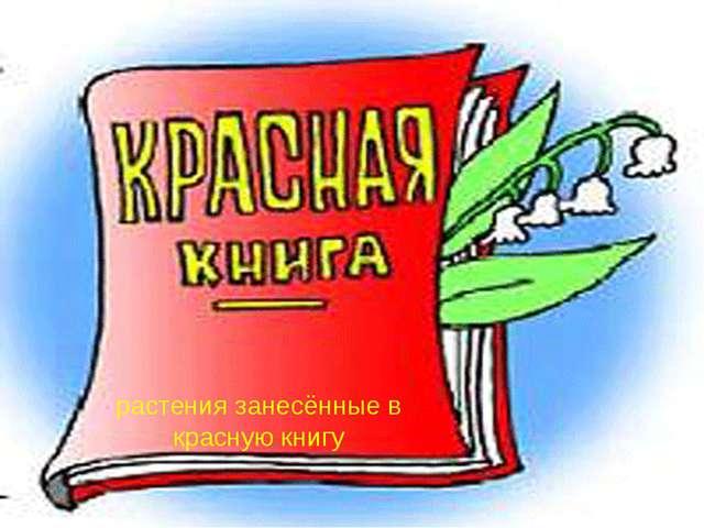 Презентацию на тему красная книга растений