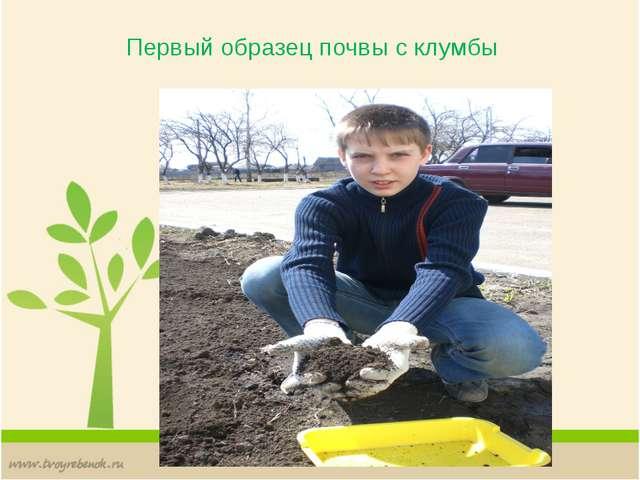 Первый образец почвы с клумбы