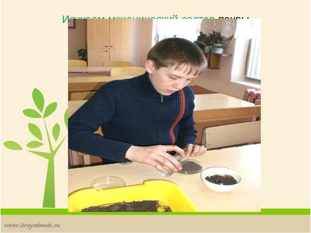 Изучаем механический состав почвы