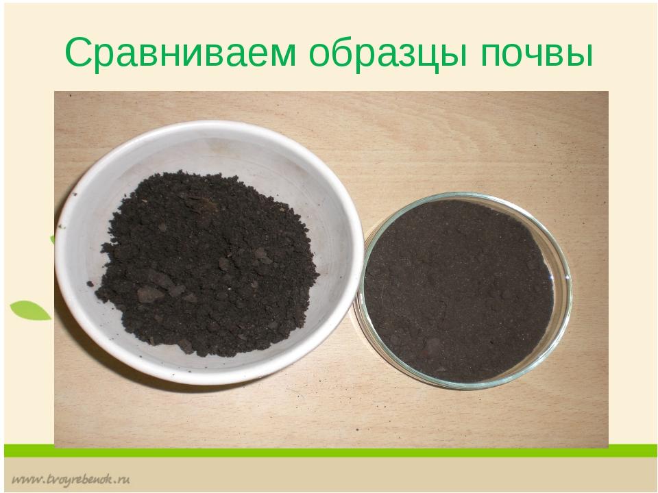 Сравниваем образцы почвы