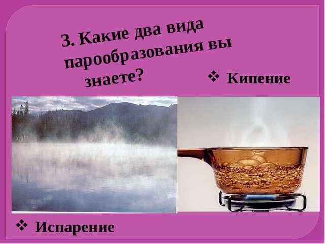 Испарение Кипение 3. Какие два вида парообразования вы знаете?