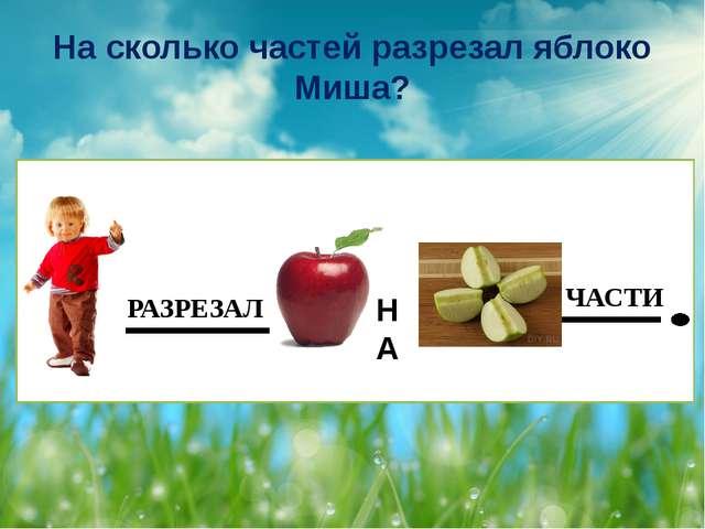 На сколько частей разрезал яблоко Миша? НА РАЗРЕЗАЛ ЧАСТИ