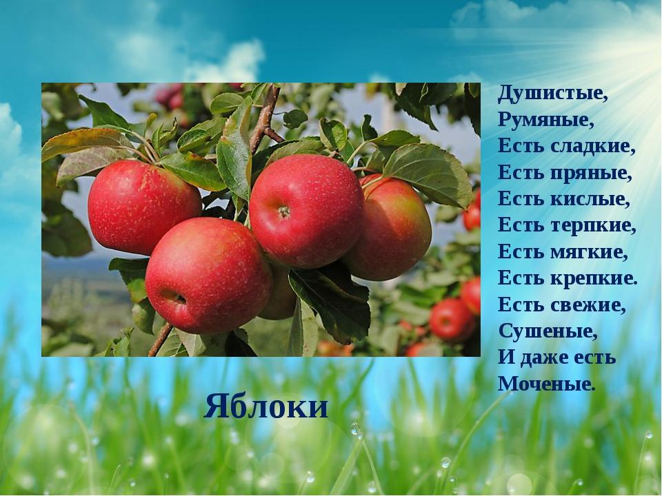 Яблоки Душистые, Румяные, Есть сладкие, Есть пряные, Есть кислые, Есть терпки...
