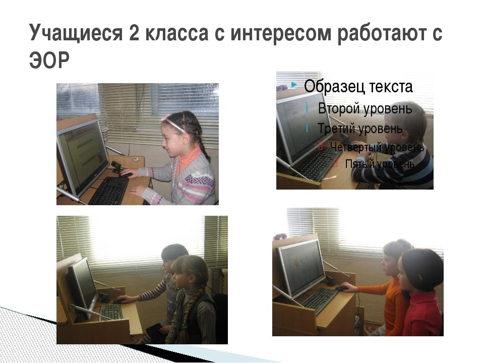 Учащиеся 2 класса с интересом работают с ЭОР