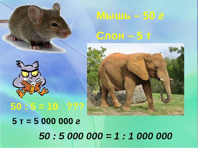 Мышь – 50 г Слон – 5 т 50 : 5 = 10 ??? 50 : 5 000 000 = 1 : 1 000 000 5 т = 5...