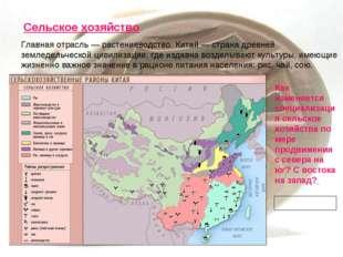 Сельское хозяйство Главная отрасль — растениеводство. Китай — страна древней