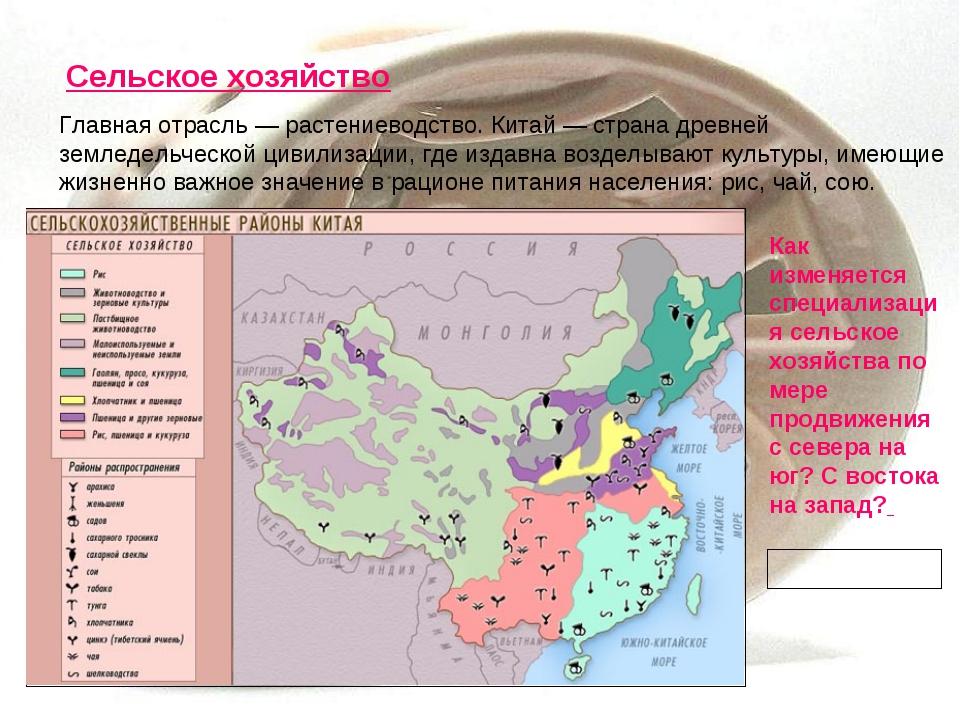 Сельское хозяйство Главная отрасль — растениеводство. Китай — страна древней...