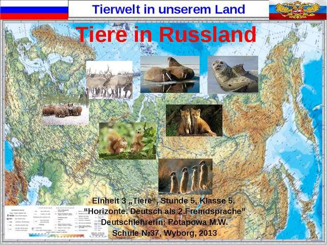 """Tiere in Russland Einheit 3 """"Tiere"""", Stunde 5, Klasse 5. """"Horizonte. Deutsch..."""