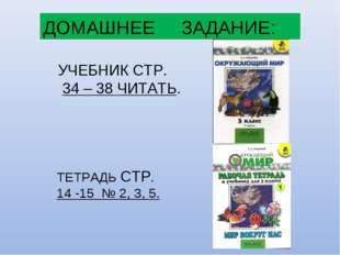 ДОМАШНЕЕ ЗАДАНИЕ: УЧЕБНИК СТР. 34 – 38 ЧИТАТЬ. ТЕТРАДЬ СТР. 14 -15 № 2, 3, 5.