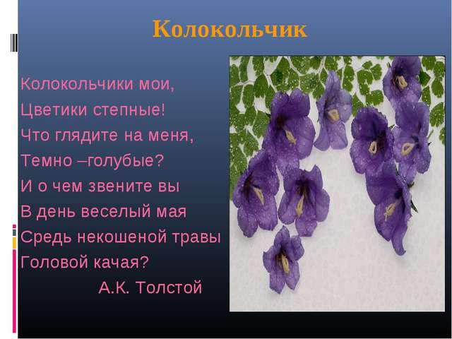 Сочинение по русскому языку 5 класса колокольчики лесные
