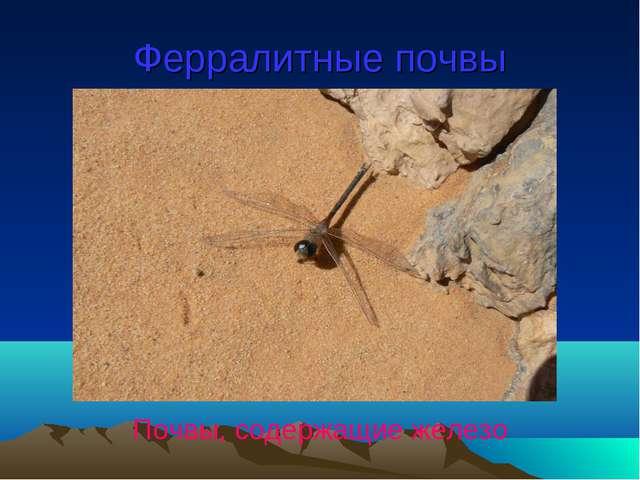 Ферралитные почвы Почвы, содержащие железо
