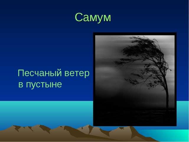 Самум Песчаный ветер в пустыне