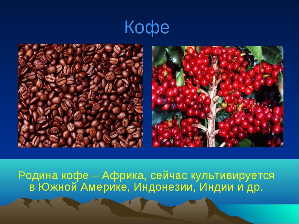 Кофе Родина кофе – Африка, сейчас культивируется в Южной Америке, Индонезии,...