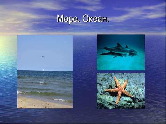 Море. Океан.
