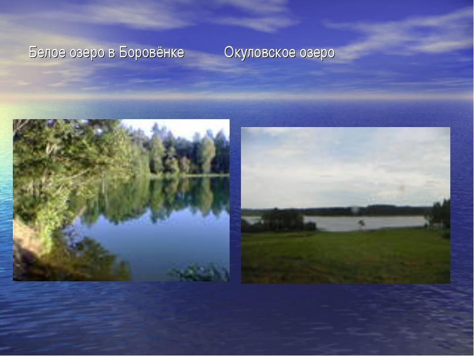 Белое озеро в Боровёнке Окуловское озеро
