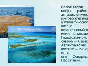 Сарга́ссово мо́ре— район антициклонического круговорота вод вАтлантическом
