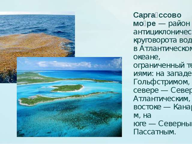 Сарга́ссово мо́ре— район антициклонического круговорота вод вАтлантическом...