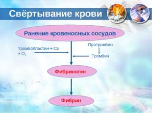 Ранение кровеносных сосудов Фибрин Фибриноген Тромбопластин + Са + О2 Протром